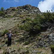 Ritorniamo all'Alpe Pluni