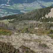 Alpi di Domàs e Motto