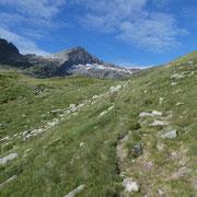 Alp de Mucia