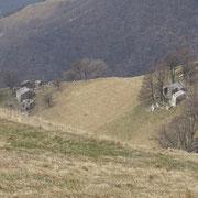 Alpe Génor