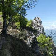 Sul sentiero panoramico