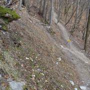 Deviazione per il Monte Generoso o Erbonne
