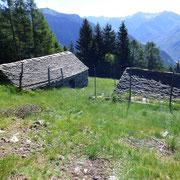 Alpe Sessaldora 1568 m