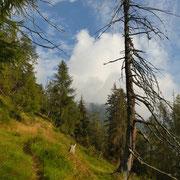 Sentiero per Carnac