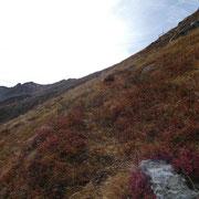Sella di Ör Languosa 2359 m