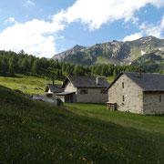 Stabbio Nuovo 1886 m