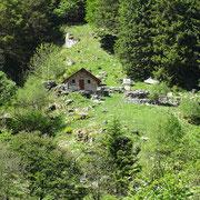Alpe Repiano in Val d'Iragna