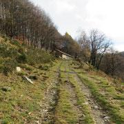 Alpe di Mageno 1287 m