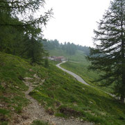 Alpe di Giumello 1594 m