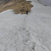 Ci sono ancora dei campi di neve