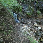 Sul sentiero che conduce ai Monti di S. Abbondio