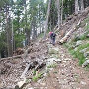Sentiero per l'Alpe Forcarid