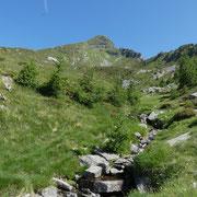 Alpe del Lago 1904 m