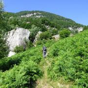 Bergnauri 1103 m
