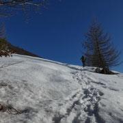 Usciti dal bosco a 1400 m