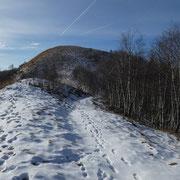 Monte Sertore