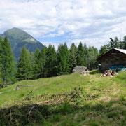 Scengio di Vacche 1482 m