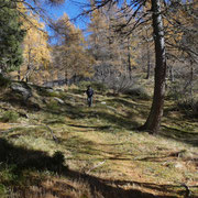 Ritorniamo all'Alpe di Giumello