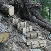Nuovi scalini per superare un tratto reso difficoltoso causa la caduta di alberi