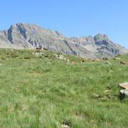 Alp de Carnac 1953 m e Pizzo di Claro