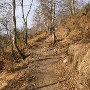 Nuovo sentiero tra Littuno e Vii