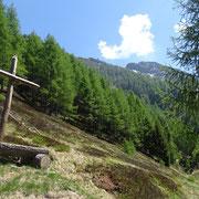 Cima di Negrös vista dall'Alpe Legrina
