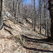 Proseguiamo su bel sentiero per l'Agher