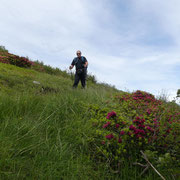 Discesa all'Alpe Ladrim