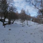Salita al Monte Borgna (deviazione ai Monti di Bassano)