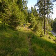 Sewntiero per l'Alp de Palazi
