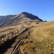 Alpe Foppa 1530 m