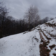 Selna 884 m