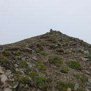 Pizzo Cavagnöö 2837 m