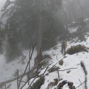 Alp di Pissadello