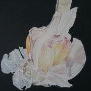 """""""Garlic"""" Öl auf Leinwand / 40x50 cm / 2019----CHF 1'200----"""