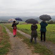 Regen braucht das Land... - Foto Ingo Pedal