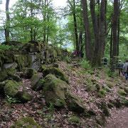 Zyklopenmauern wurden vom Wald zurückerobert