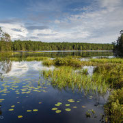Fagertärn Naturreservat