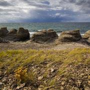 Wilder Küstenstrich an der Nordwestküste von Öland