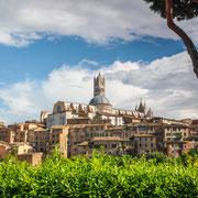 Blick auf die Altstadt von Siena