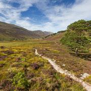 Weite Täler im Cairngorms Nationalpark, Schottland