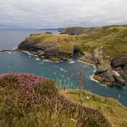 Küstenstrich in der Nähe von Tintagel, Cornwall, Südwestengland