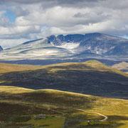 Dovrefjell in Norwegen