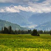 Berner Oberland mit Blick auf Eiger, Mönch und Jungfrau