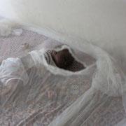 Mückennetze sind sehr wichtig. Oft haben diese jedoch Löcher oder werden gerade von den Kindern nicht richtig genutzt.