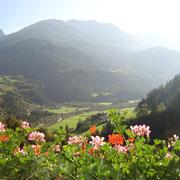 Zöschgenhof Haus Ganzer Pension Urlaub Osttirol Sommer Ferienwohnung Apartment Zimmer