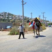 Kameltreiber mit Kamel