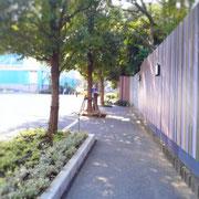 坂道を登り切ってさらに進むとこんな感じの細い歩道になります。左手は駐車場。