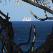 Sail ship in front of Casas Pelicano