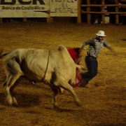 Escaping from the bull